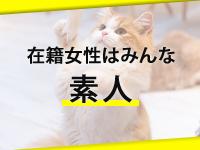 キティーズテラス東京本店で働くメリット2