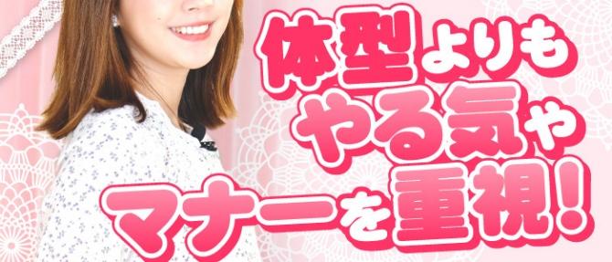 キティーズテラス東京本店のぽっちゃり求人画像