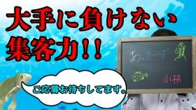 あっきーず 姫路・加古川・明石の求人動画