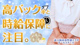 南大阪回春性感エステオールスターズの求人動画