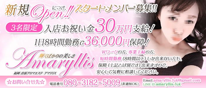 Amaryllis(アマリリス)