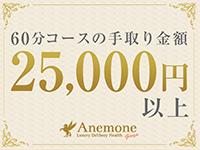 アネモネ Anemone 品川