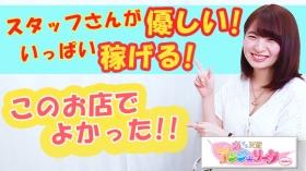 品川アンジェリーク(アンジェリークグループ)に在籍する女の子のお仕事紹介動画