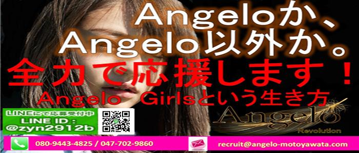 Angelo Revolutionの求人画像