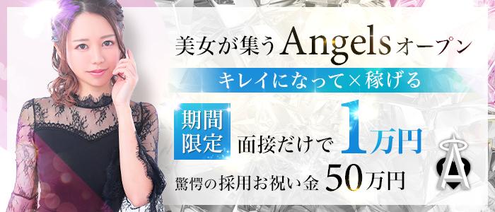 Angelsの未経験求人画像