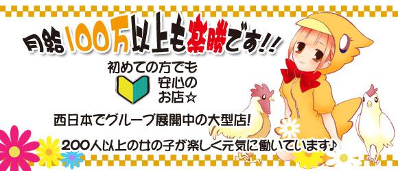 体験入店・アロママッサージのお店 アップルティ宮崎店