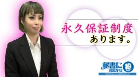 秘書におまかせ 癒の求人動画