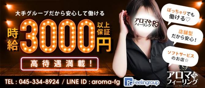 アロマdeフィーリングin横浜(FG系列)のぽっちゃり求人画像