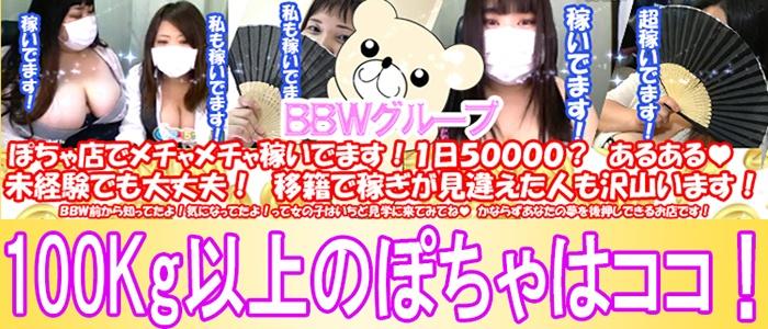 ぽっちゃりデリヘル BBW 名古屋店