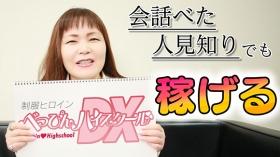 べっぴんハイスクールDXの求人動画