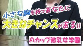 Aカップ微乳女学園のバニキシャ(スタッフ)動画