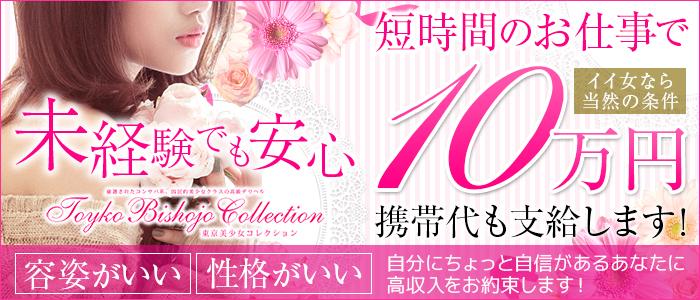 東京美少女コレクションの求人画像