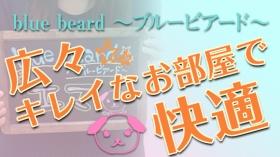 blue beard ~ブルービアード~