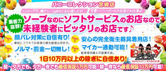 バニーコレクション宮崎店の求人画像