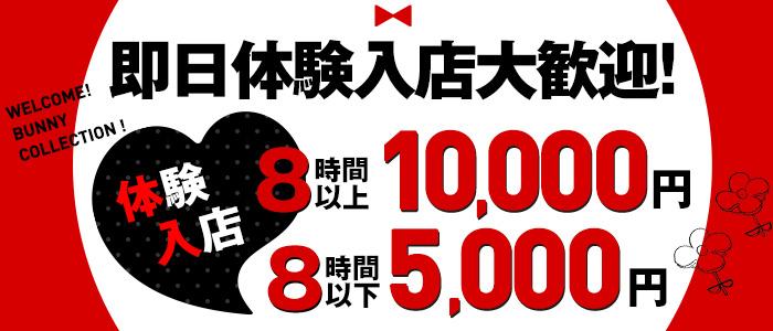バニーコレクション千葉栄町店の体験入店求人画像