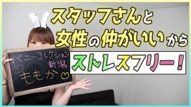 バニーコレクション新潟のバニキシャ(女の子)動画