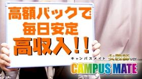 キャンパスメイト 女教師編の求人動画