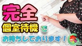 東千葉駅前ちゃんこに在籍する女の子のお仕事紹介動画