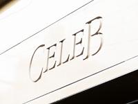 Celeb ~セレブ~