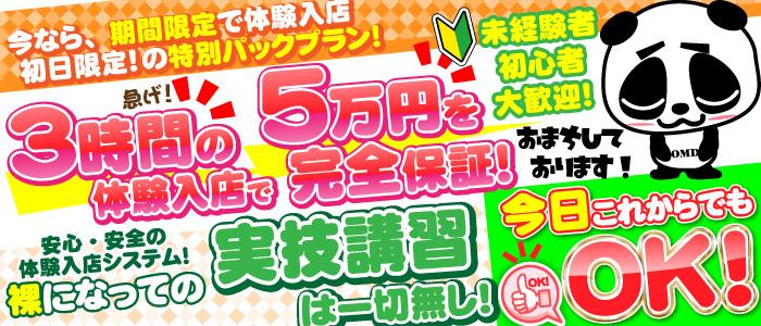ちぇっくいん横浜女学園の体験入店求人画像