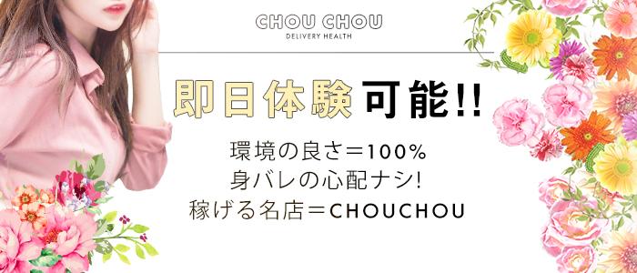 chou chou シュシュの体験入店求人画像