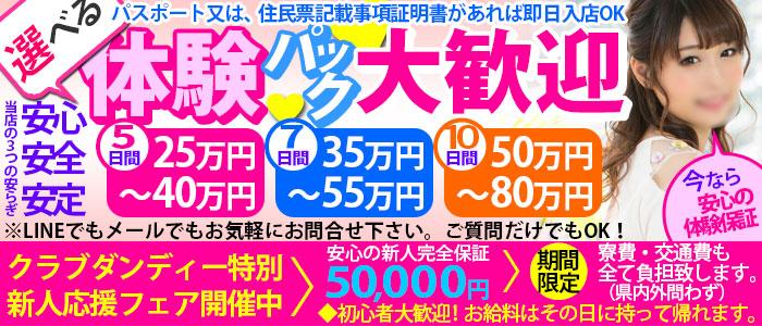 体験入店・クラブダンディー