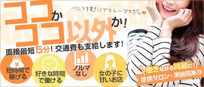 CoCoaco(ココアコ) 大阪本店の求人画像