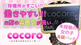 cocoroの求人動画