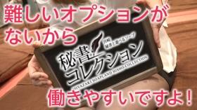 秘書コレクション宮崎の求人動画