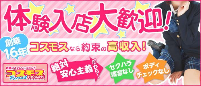 体験入店・吉原 コスモス