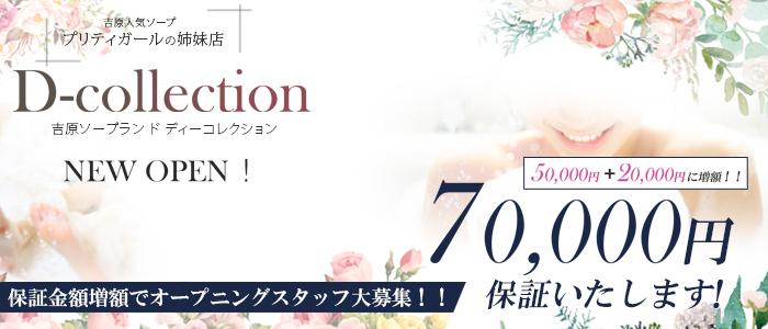 D-collection(ディ―コレクション)