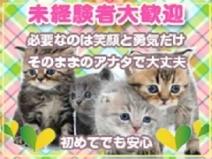 未経験者でも安心のソフトサービス☆のアイキャッチ画像