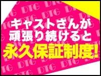 デリヘル東京グループ(DTG)