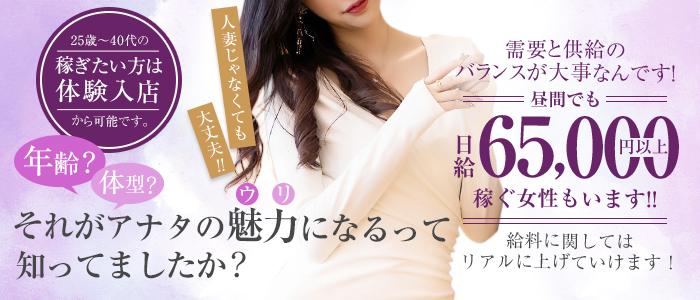 デザインリング東京本店の人妻・熟女求人画像