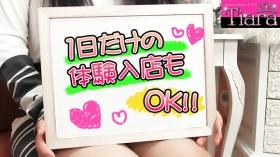 Tiara-ティアラ-のバニキシャ(女の子)動画