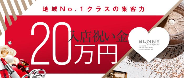 ドMなバニーちゃん 和歌山店の求人画像