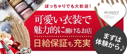 ドMなバニーちゃん 和歌山店の求人情報