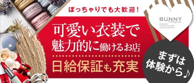 ドMなバニーちゃん 和歌山店のぽっちゃり求人画像