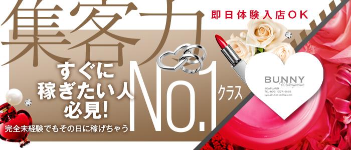 ドMなバニーちゃん 和歌山店の体験入店求人画像