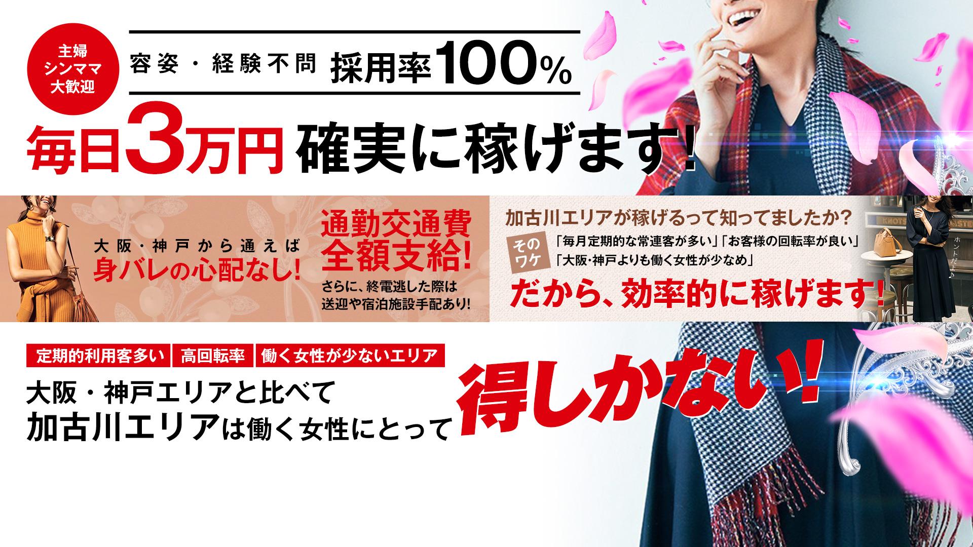 ドMな奥様加古川店の求人画像
