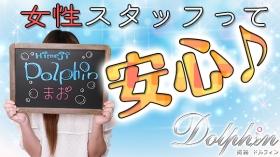 姫路ドルフィンに在籍する女の子のお仕事紹介動画