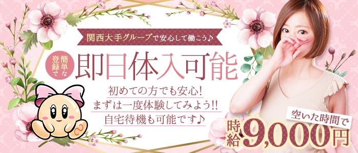 DRESS(シグマグループ)の体験入店求人画像