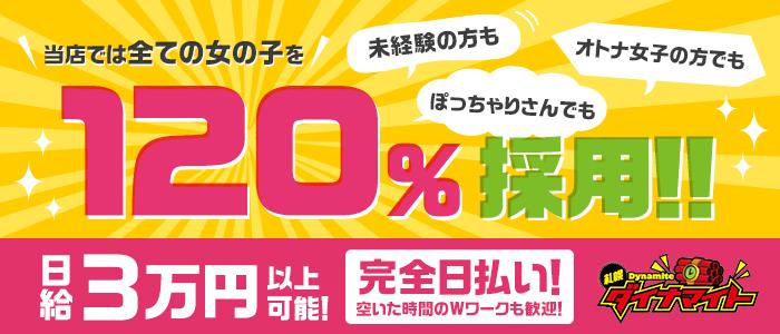 札幌ダイナマイトの求人画像