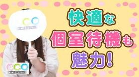 エコグループに在籍する女の子のお仕事紹介動画
