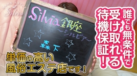 Silvia銀座~シルビア~の求人動画