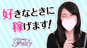 スレンダー美女専門店 フェアリーの求人動画