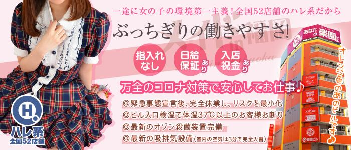 メイドin福岡(福岡ハレ系)の体験入店求人画像