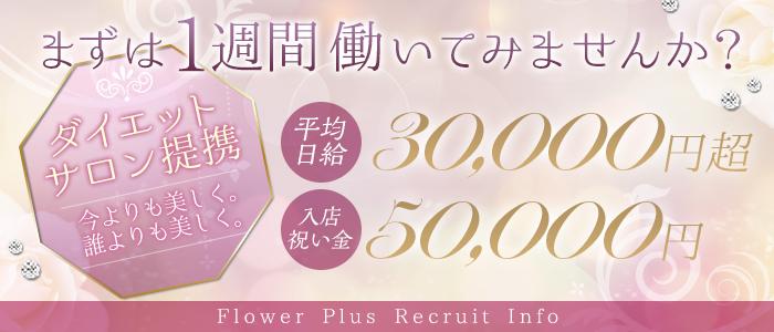 体験入店・flower plus(フラワープラス)