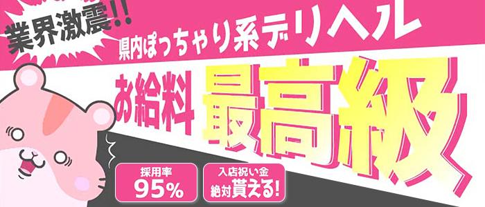 ぽちゃチャンネルの体験入店求人画像