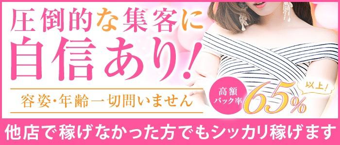 ギン妻パラダイス 京橋店の人妻・熟女求人画像